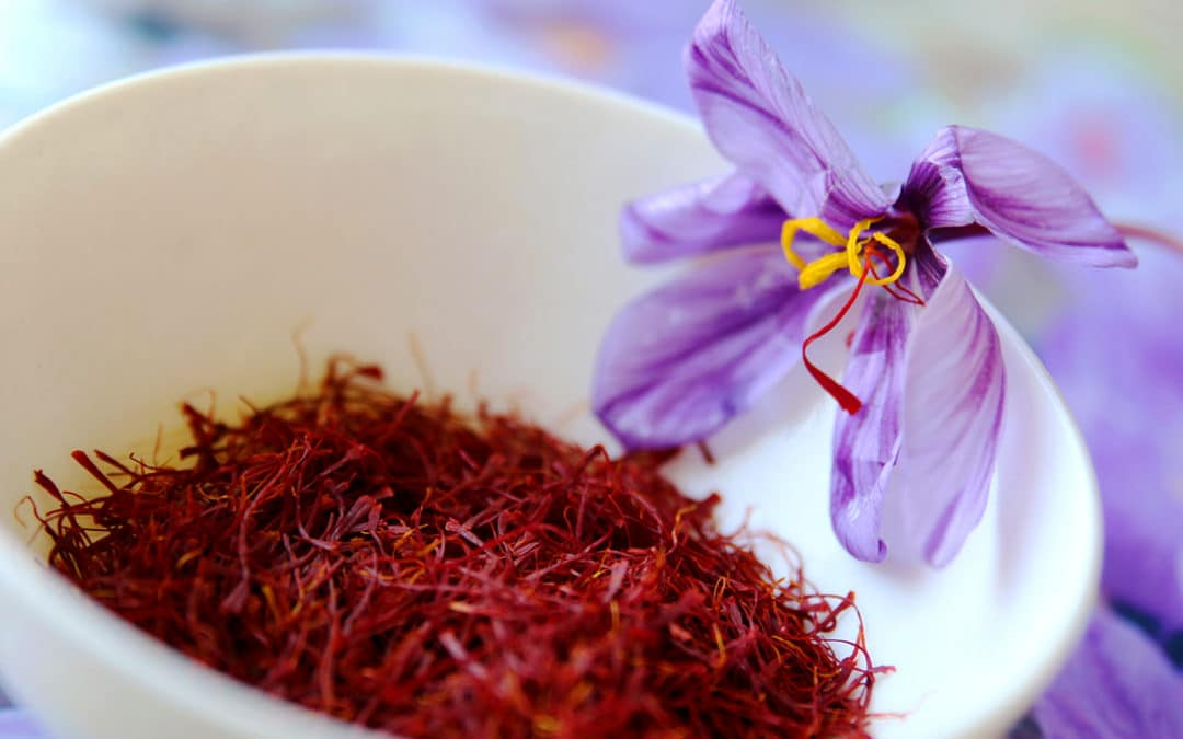 Saffron – An In-depth Look